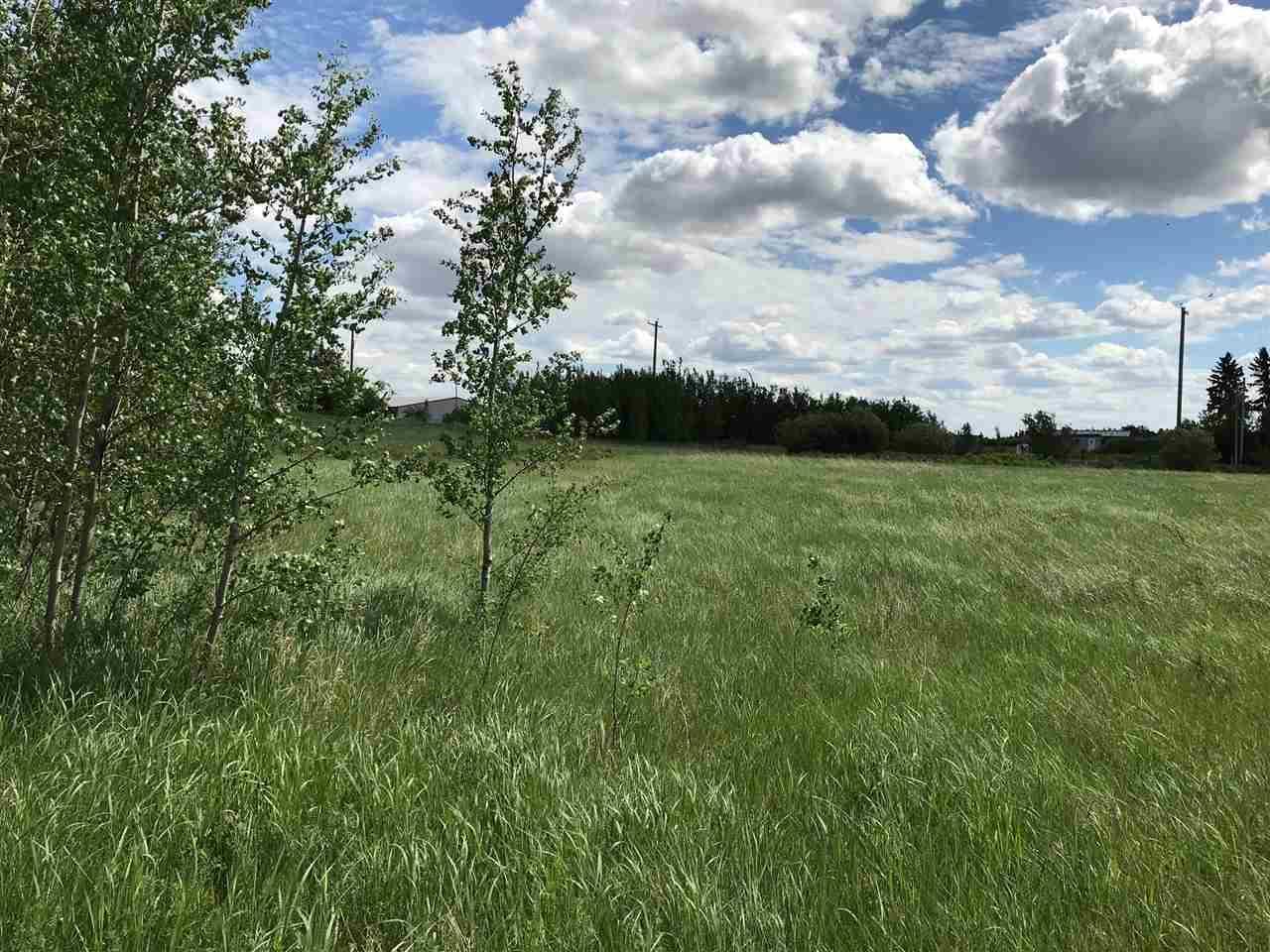 5619 53 Av, Tofield, Alberta  T0B 4J0 - Photo 3 - E4168513