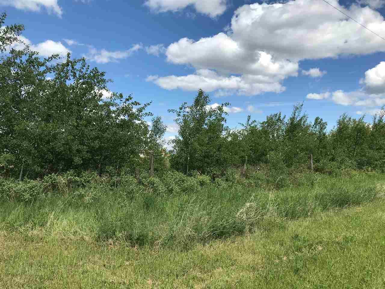 5619 53 Av, Tofield, Alberta  T0B 4J0 - Photo 9 - E4168513