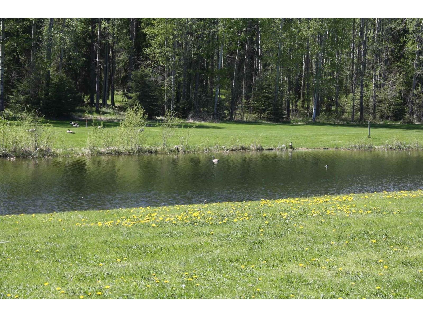 73 Silversprings, Rural Wetaskiwin County, Alberta  T0C 0T0 - Photo 3 - E4236271