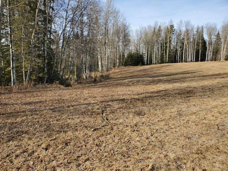 73 Silversprings, Rural Wetaskiwin County, Alberta  T0C 0T0 - Photo 4 - E4236271