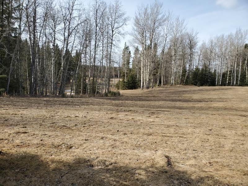 73 Silversprings, Rural Wetaskiwin County, Alberta  T0C 0T0 - Photo 5 - E4236271