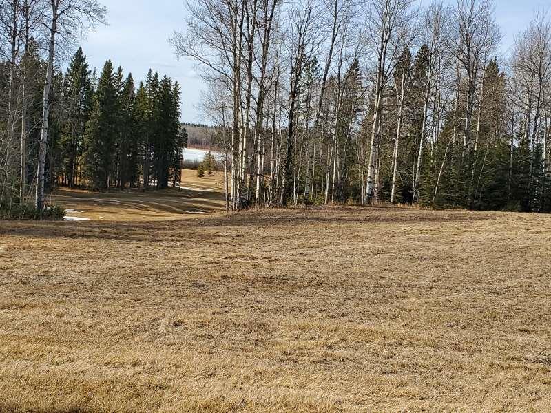 73 Silversprings, Rural Wetaskiwin County, Alberta  T0C 0T0 - Photo 6 - E4236271