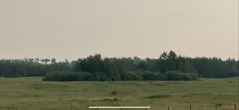 4 Highway 36, Rural Two Hills County, Alberta  T0B 4K0 - Photo 3 - E4243674