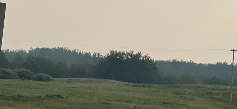 5 Highway 36, Rural Two Hills County, Alberta  T0B 4K0 - Photo 4 - E4243685