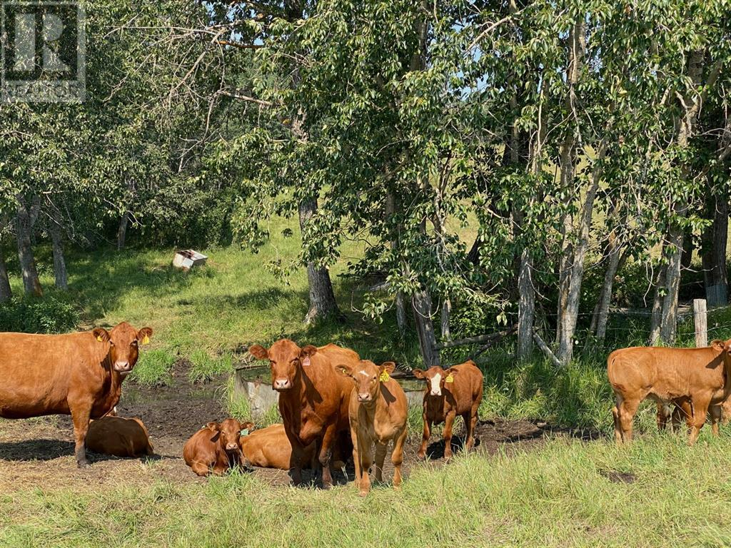 Range Road 23-1, Rural Lacombe County, Alberta  T0B 3C0 - Photo 15 - A1133348