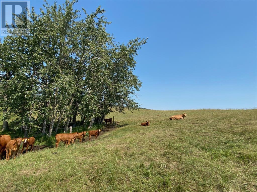 Range Road 23-1, Rural Lacombe County, Alberta  T0B 3C0 - Photo 16 - A1133348