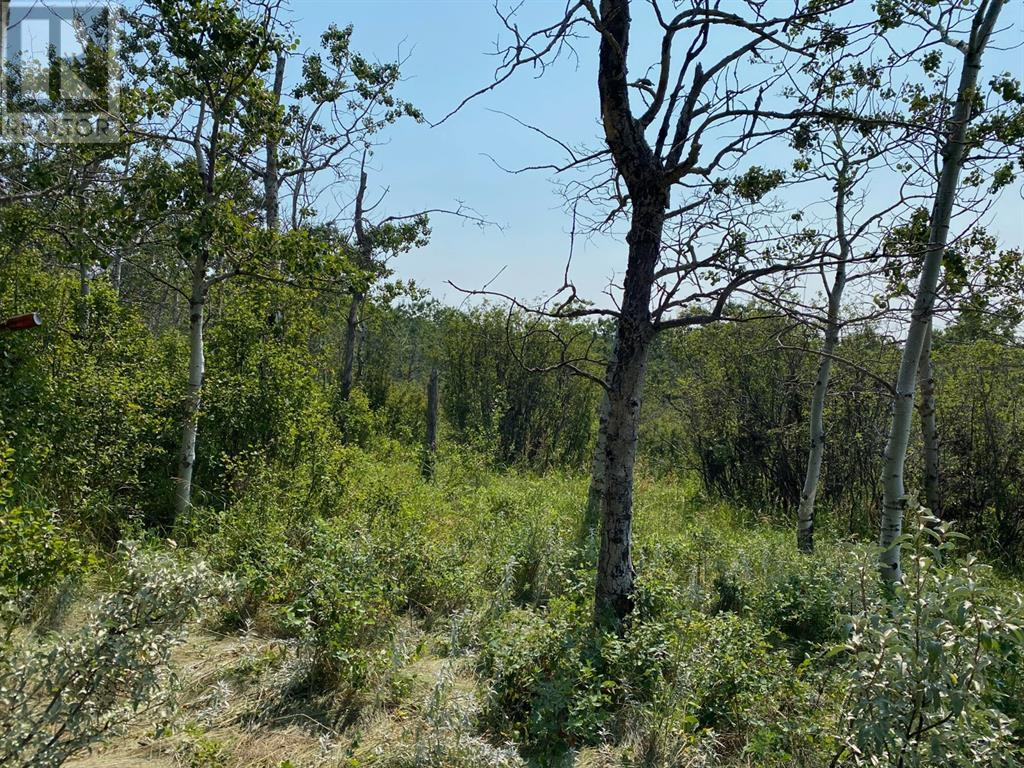 Range Road 23-1, Rural Lacombe County, Alberta  T0B 3C0 - Photo 26 - A1133348