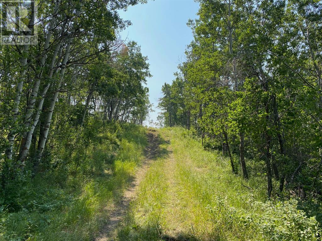 Range Road 23-1, Rural Lacombe County, Alberta  T0B 3C0 - Photo 31 - A1133348