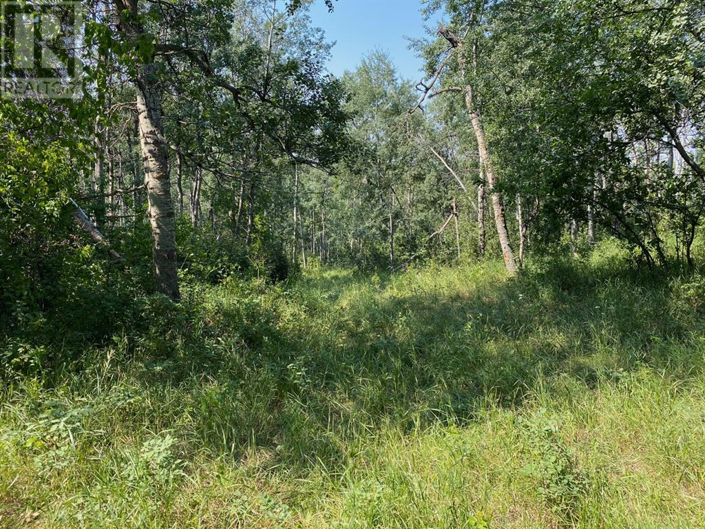 Range Road 23-1, Rural Lacombe County, Alberta  T0B 3C0 - Photo 32 - A1133348