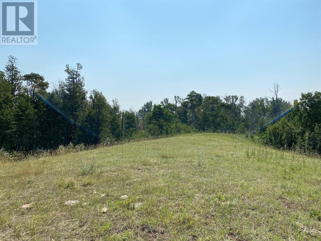 Range Road 23-1, Rural Lacombe County, Alberta  T0B 3C0 - Photo 4 - A1133348