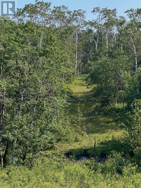 Range Road 23-1, Rural Lacombe County, Alberta  T0B 3C0 - Photo 7 - A1133348