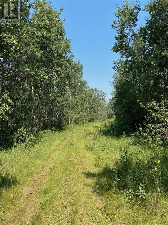 Range Road 23-1, Rural Lacombe County, Alberta  T0B 3C0 - Photo 8 - A1133348