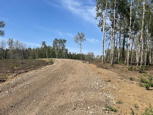 12 52528 Range Road 191, Rural Beaver County, Alberta  T0B 4J0 - Photo 2 - E4260109