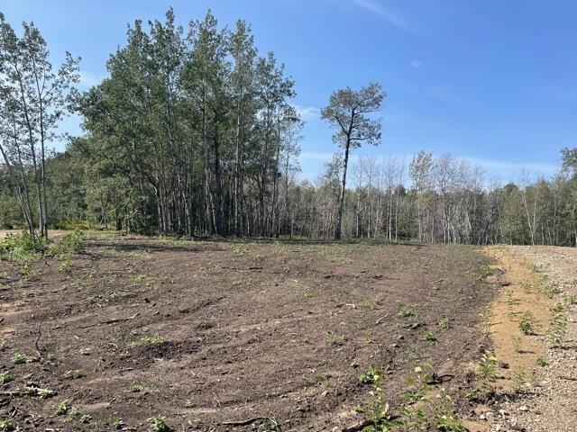12 52528 Range Road 191, Rural Beaver County, Alberta  T0B 4J0 - Photo 3 - E4260109