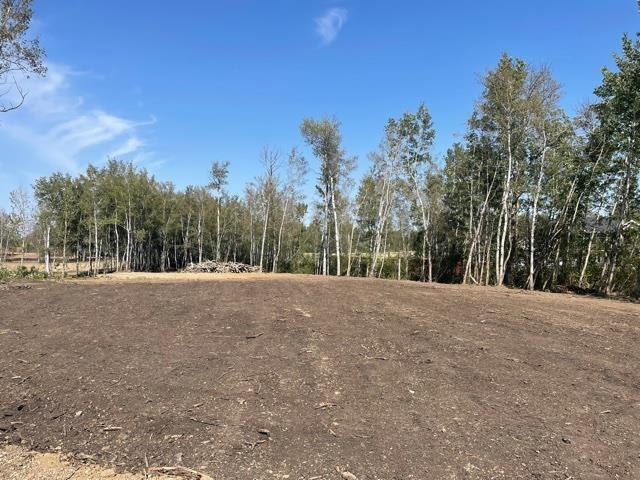 12 52528 Range Road 191, Rural Beaver County, Alberta  T0B 4J0 - Photo 4 - E4260109