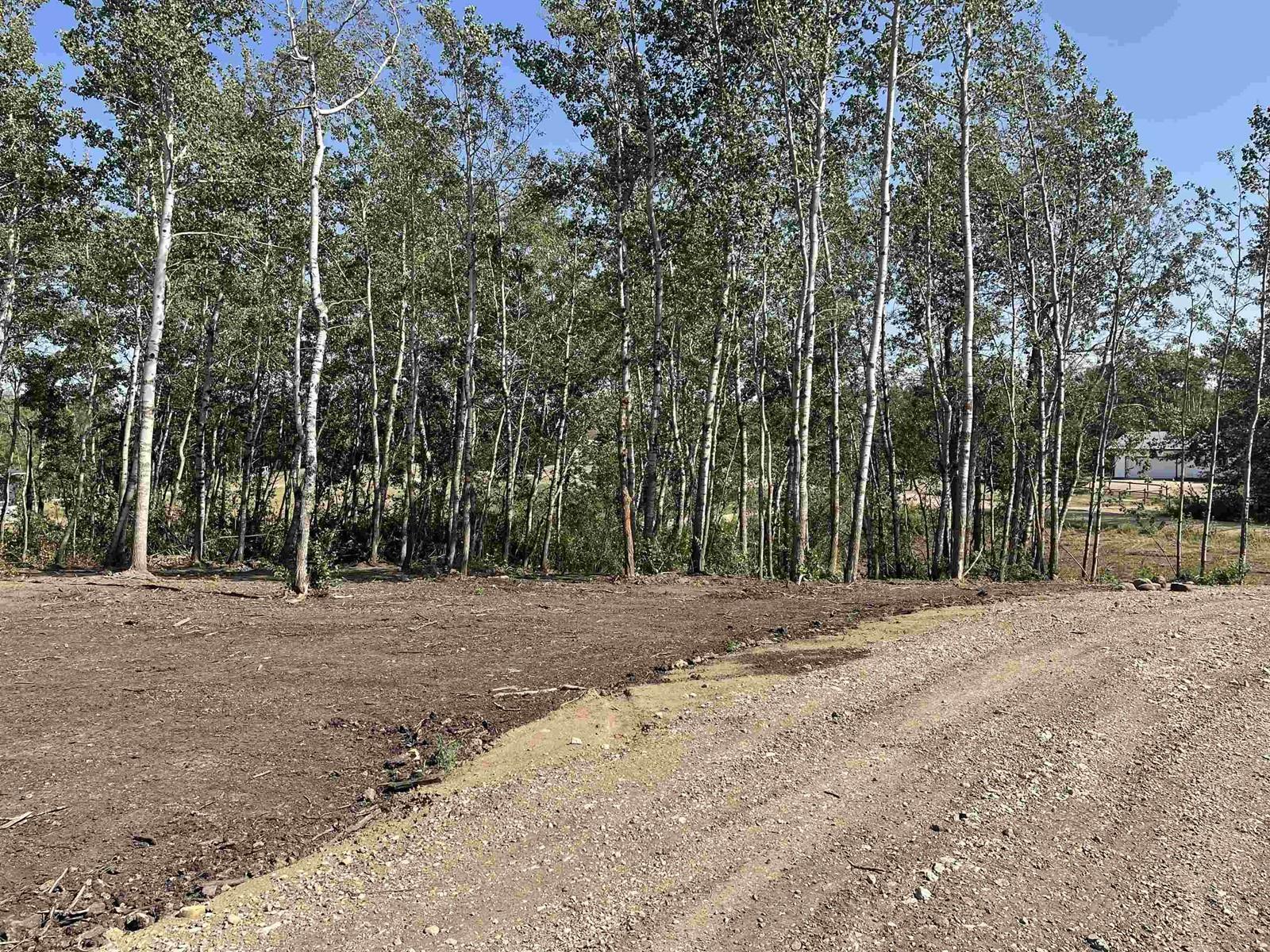 12 52528 Range Road 191, Rural Beaver County, Alberta  T0B 4J0 - Photo 5 - E4260109